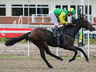 ANOTHER TWO YEAR OLD WINNER !!! - at Chelmsford for Keeper's 12 Eagles Dare